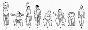 Eight Section Brocade Postures