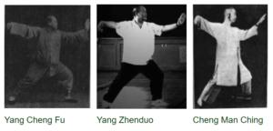 Yang Stances - Single Whip